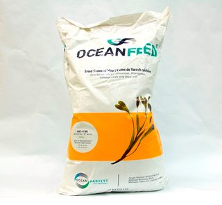 OceanFeed Dried Seaweed Meal (PL)
