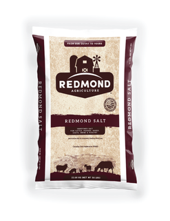 Redmond Natural Salt