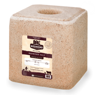 Redmond Natural Salt Block
